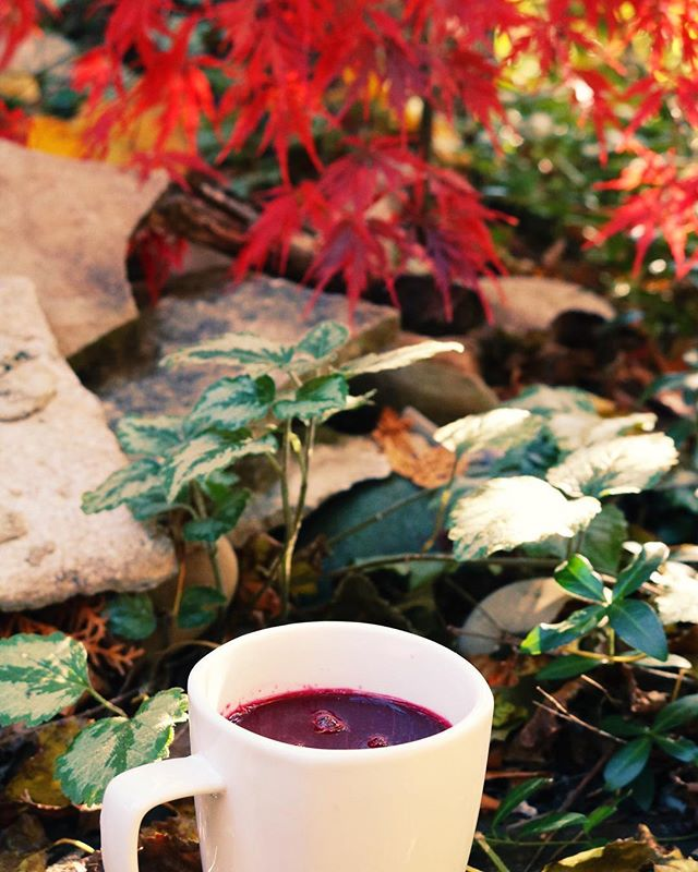 As colder weather moves in, we fully understand the need/want for warmth! Now, you can take roots with you in a mug!  We are now offering our juices gently warmed by request. The process will keep most of the nutrient content and will leave your mind and body nurtured and soothed during the cold months to come.  Try it with the Up Beet, Pinapple Punk, or Vim N Vigor! (Those are some of our favorites ❤️💛🧡)