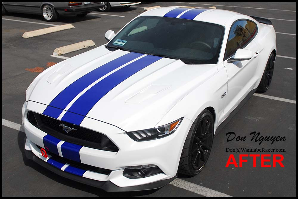 Mustang GT 5.0 Coupe - Blue Racing Stripes with Black Pin Stripes Vinyl Wrap