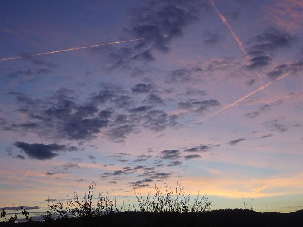 - Rien n'est plus beau que le réveil du jour. Le ciel, les arbres, la terre, tout a une couleur particulière. (Jean-Michel Wyl)