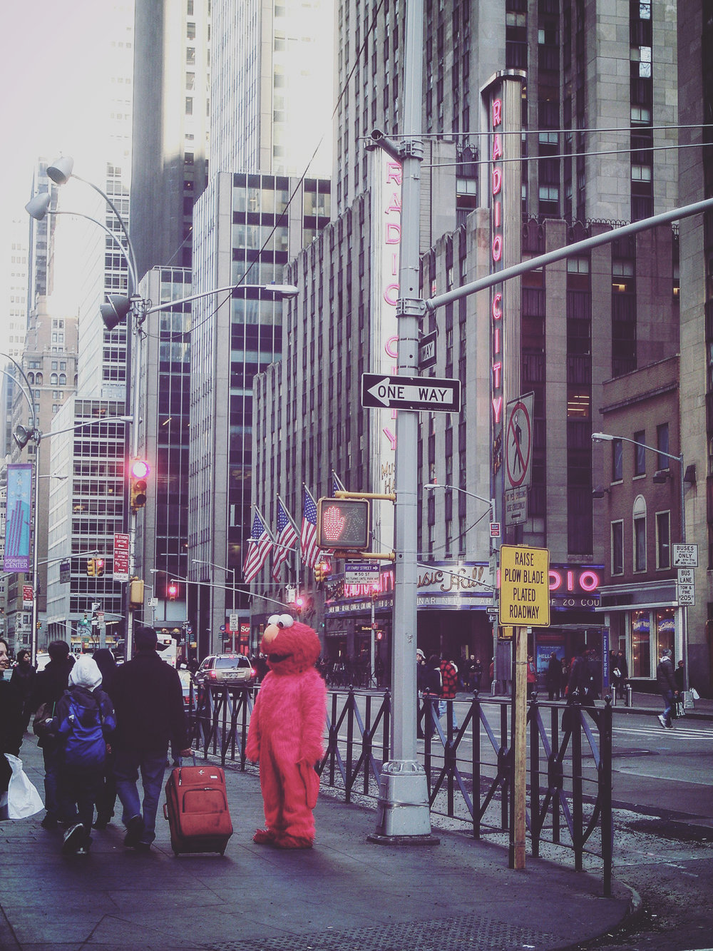 "6. Barbosa Nathalie ""Elmo, le rose et le New York City Hall"""