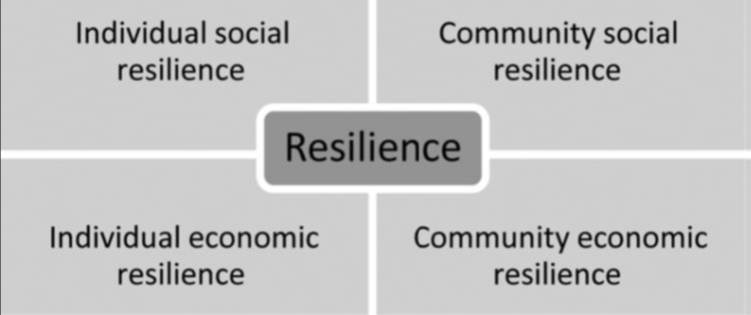 "The REA identified many definitions of resilience. Steiner and Markantoni (2013) introduced the four components of ""social resilience"" which, with other frameworks and approaches, supported the development of an indicator framework for flood resilience for the pathfinder communities."