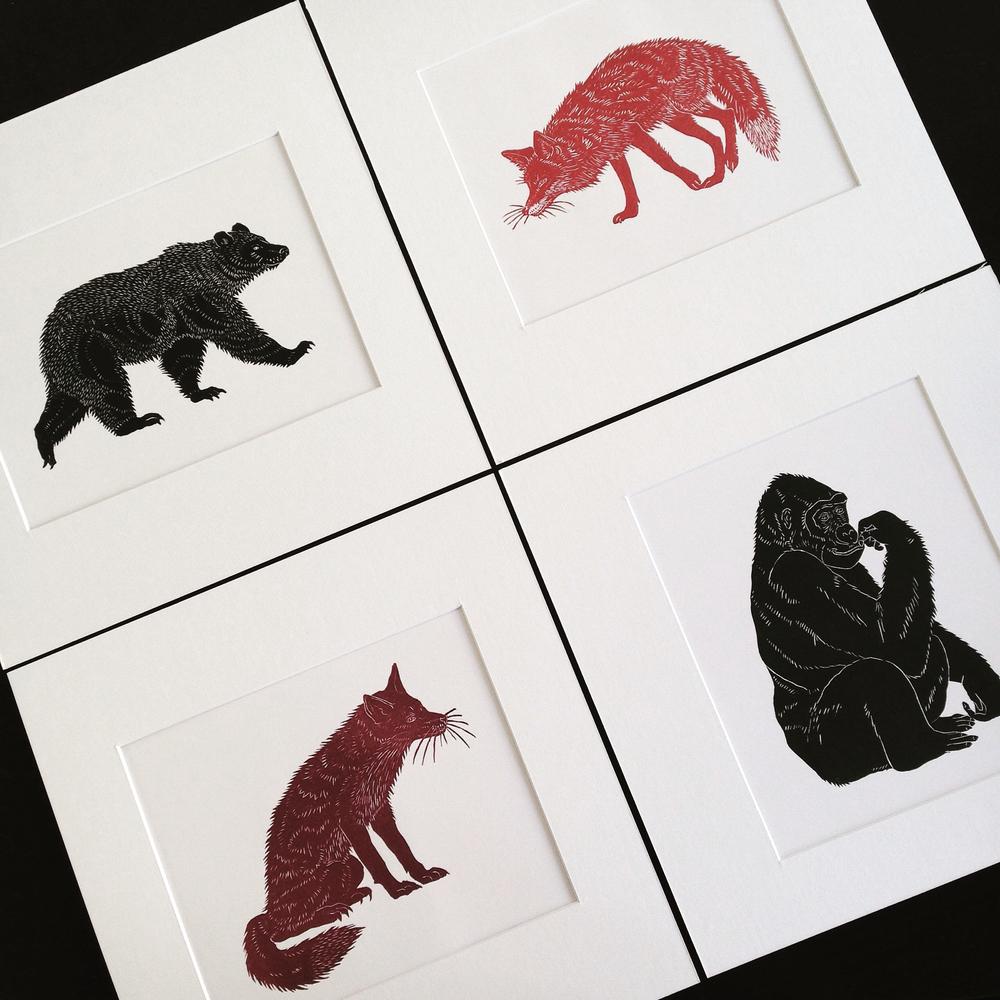Lino prints by Lindsay McDonagh