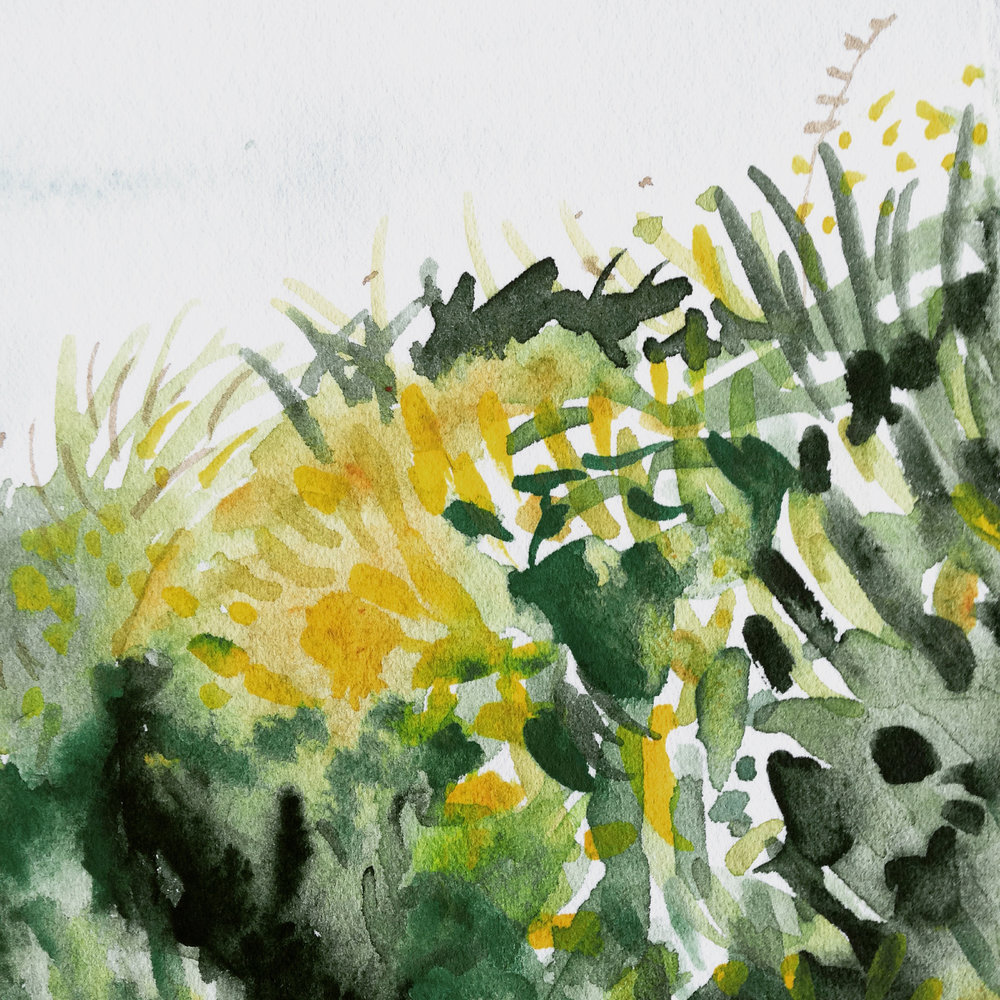 Countryside water-colour by Lindsay McDonagh