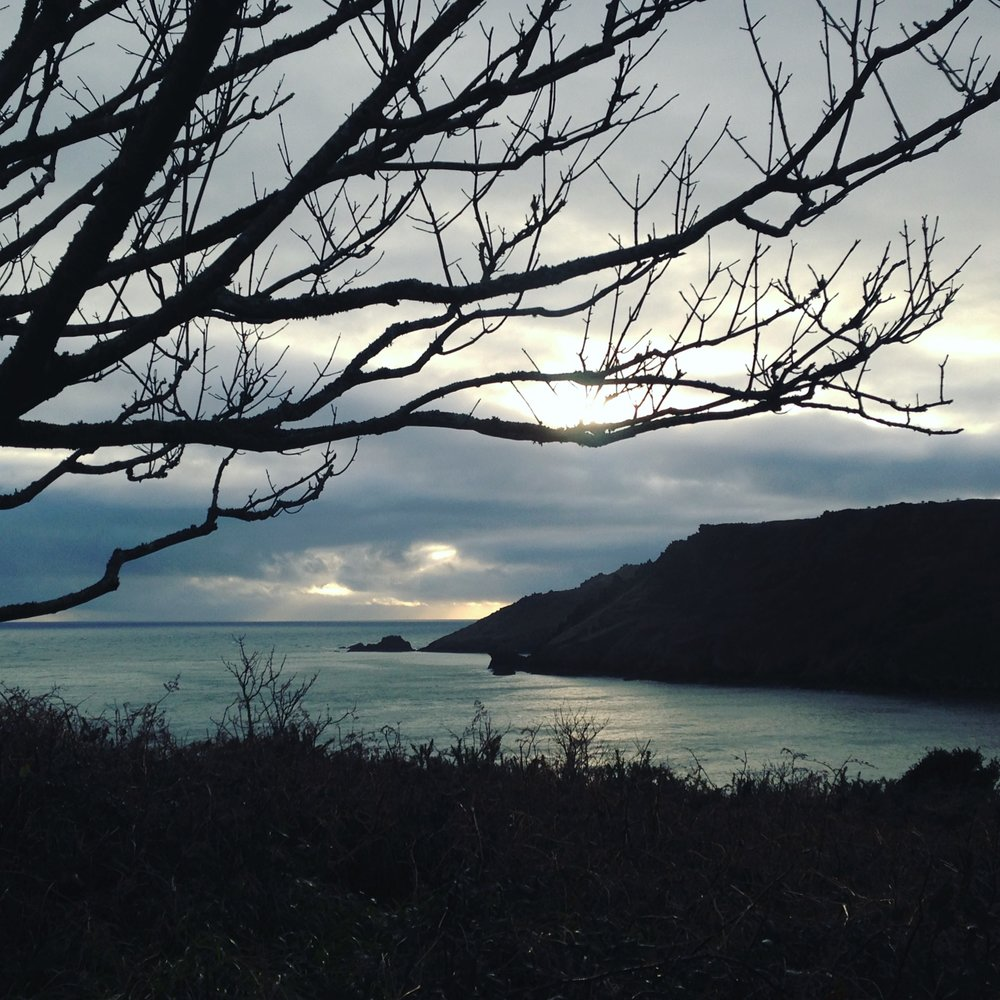 Near Salcombe, photograph by Lindsay McDonagh
