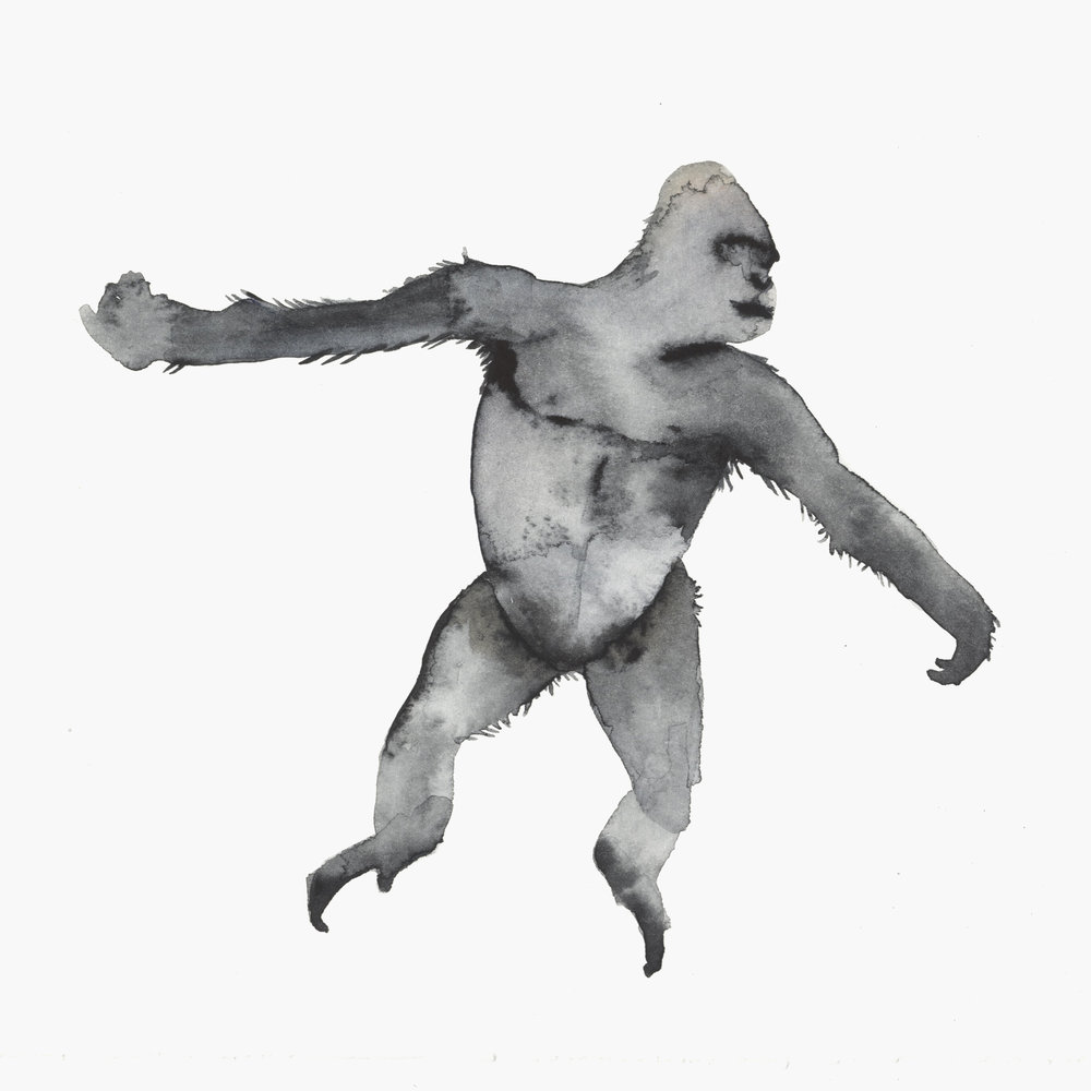 Gorilla moves by Lindsay McDonagh
