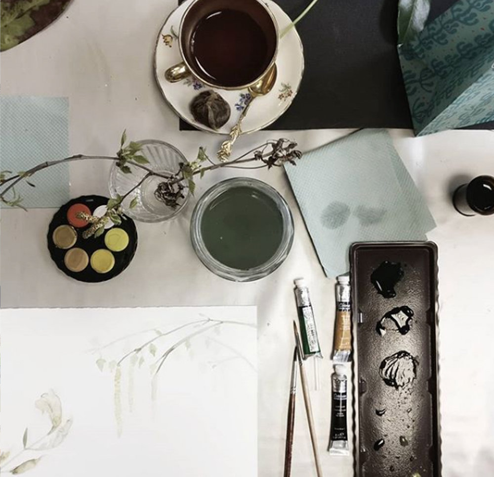 Botanical Watercolour workshop Lindsay McDonagh