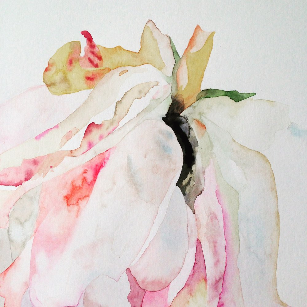 Close up watercolour of flower by Lindsay McDonagh
