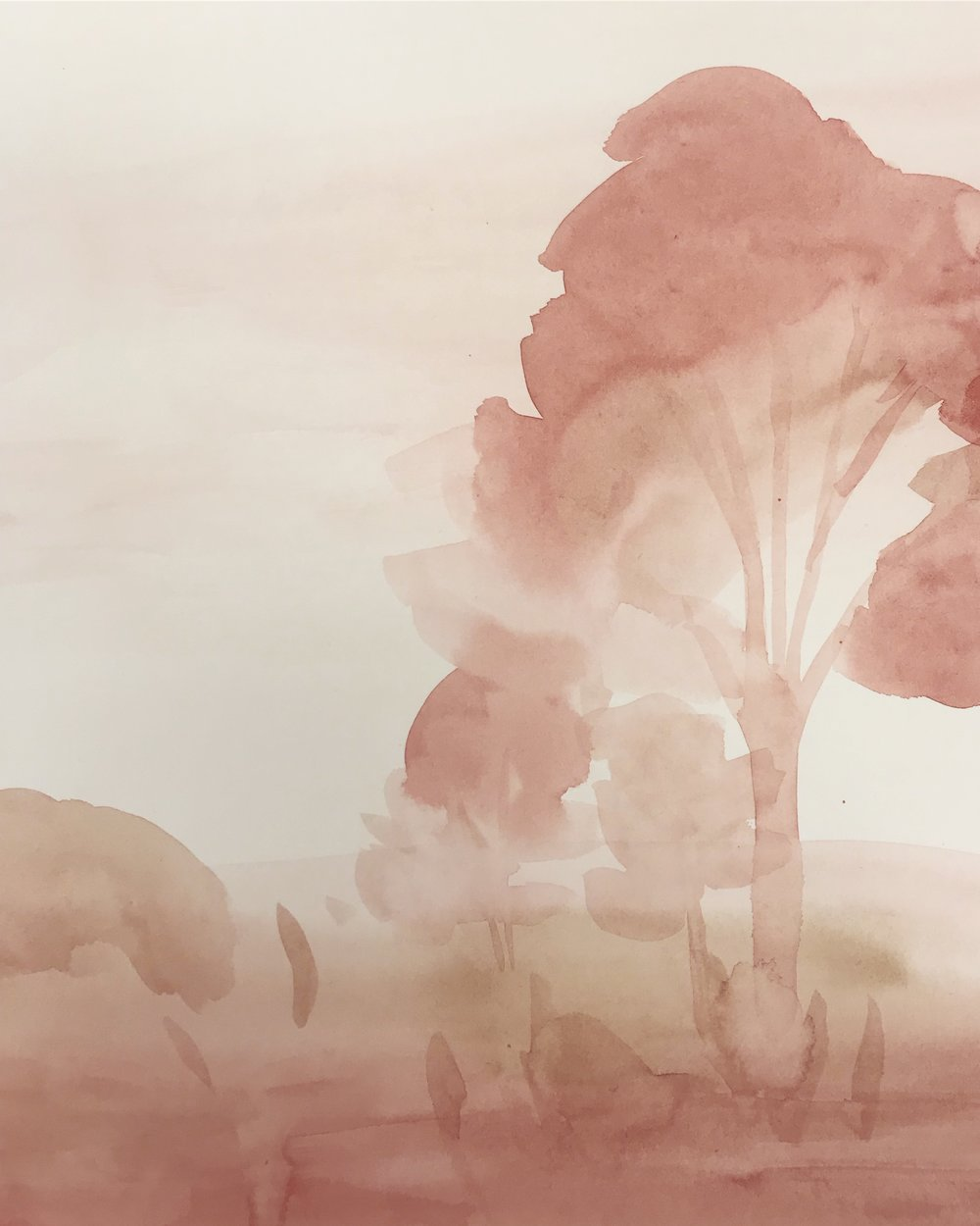 trees in pink Lindsay McDonagh