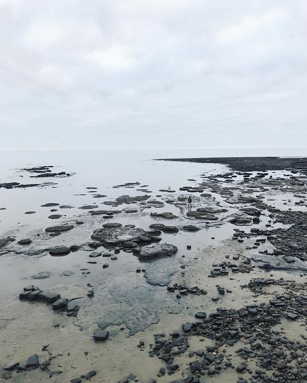 beach Lindsay McDonagh