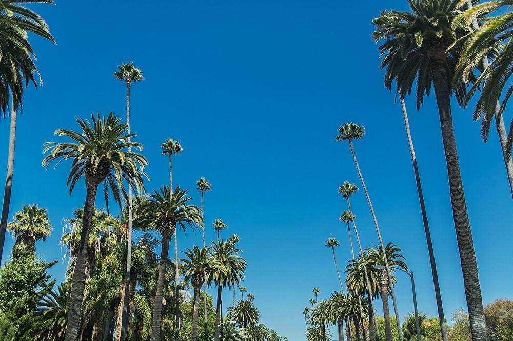 Kalifornien_Bilder_033.jpg