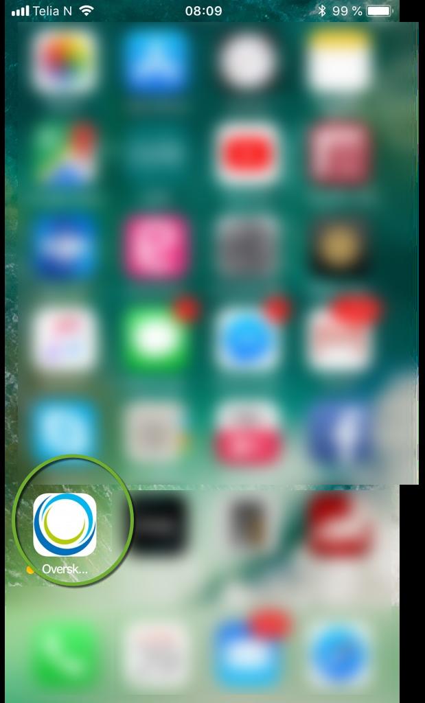 Overskudd app.png