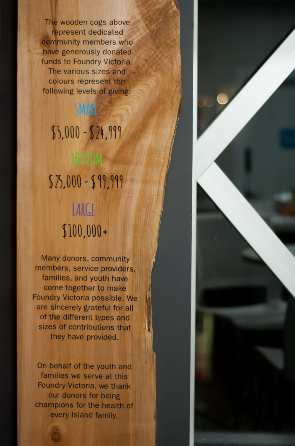Both columns beneath the donor wall feature hung live-edge maple slabs with information for youth and visitors about what donors are, why they matter, and what the different levels of giving represent.