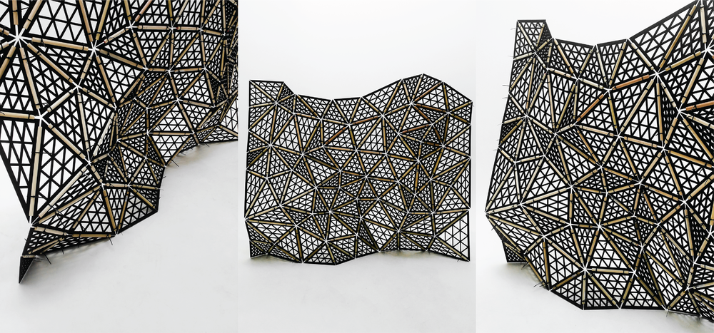 parametric tessellated wall