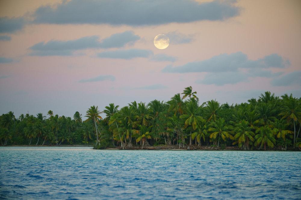 Tahiti 20161838.jpg