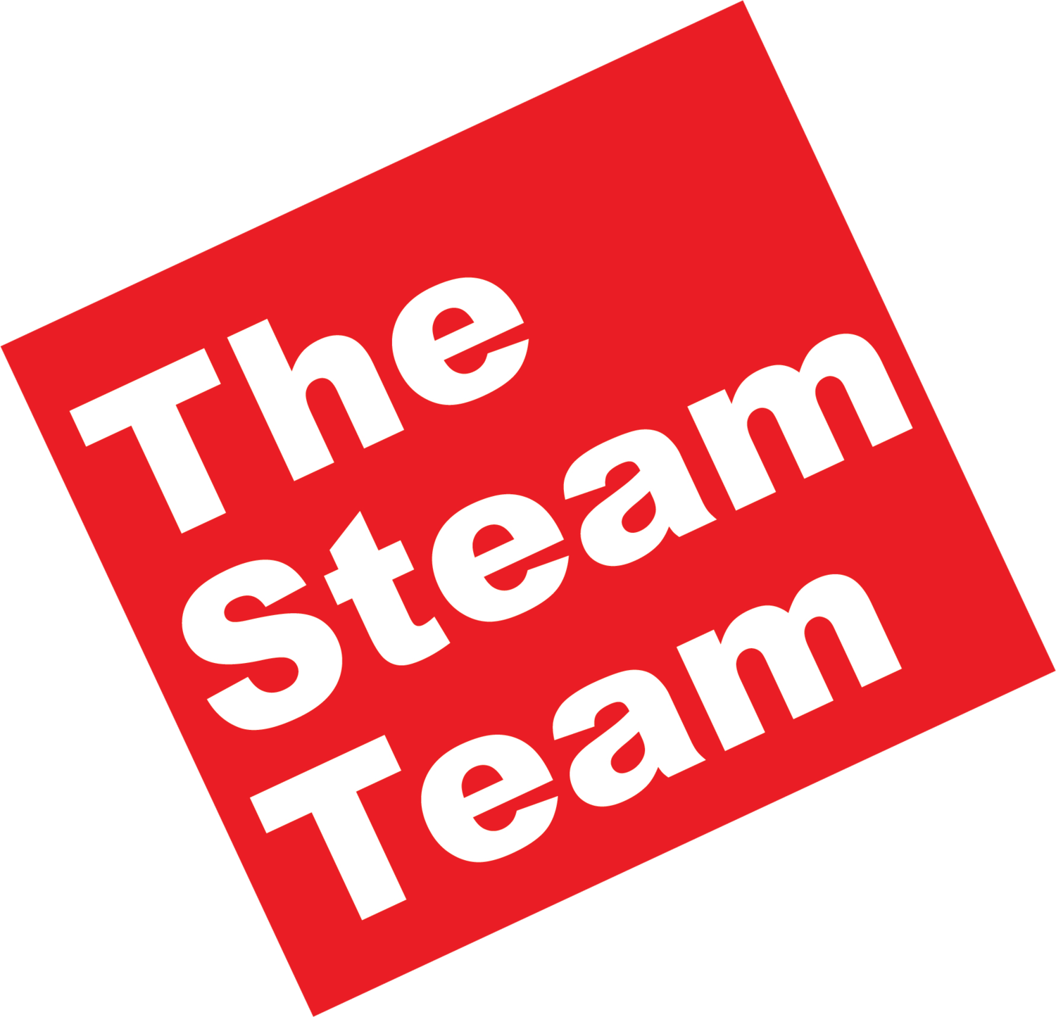 The Steam Team — Austin, TX