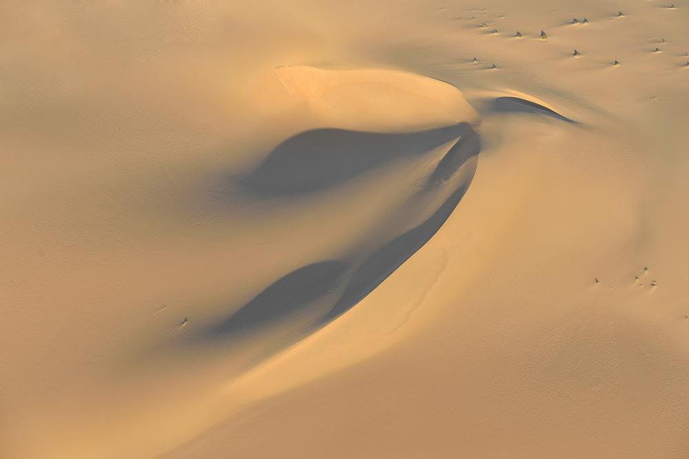 Desert01 copy.jpg