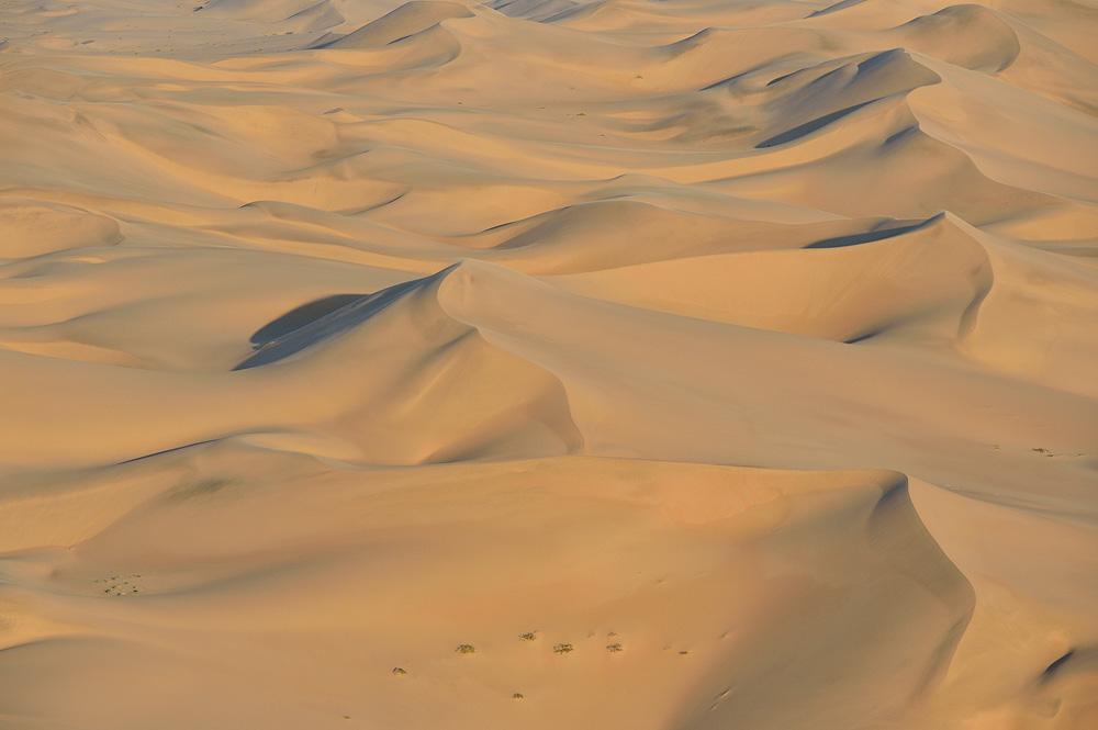 Desert05 copy.jpg