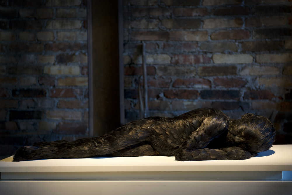 Lucy Glendinning, Feather Child 2.jpg
