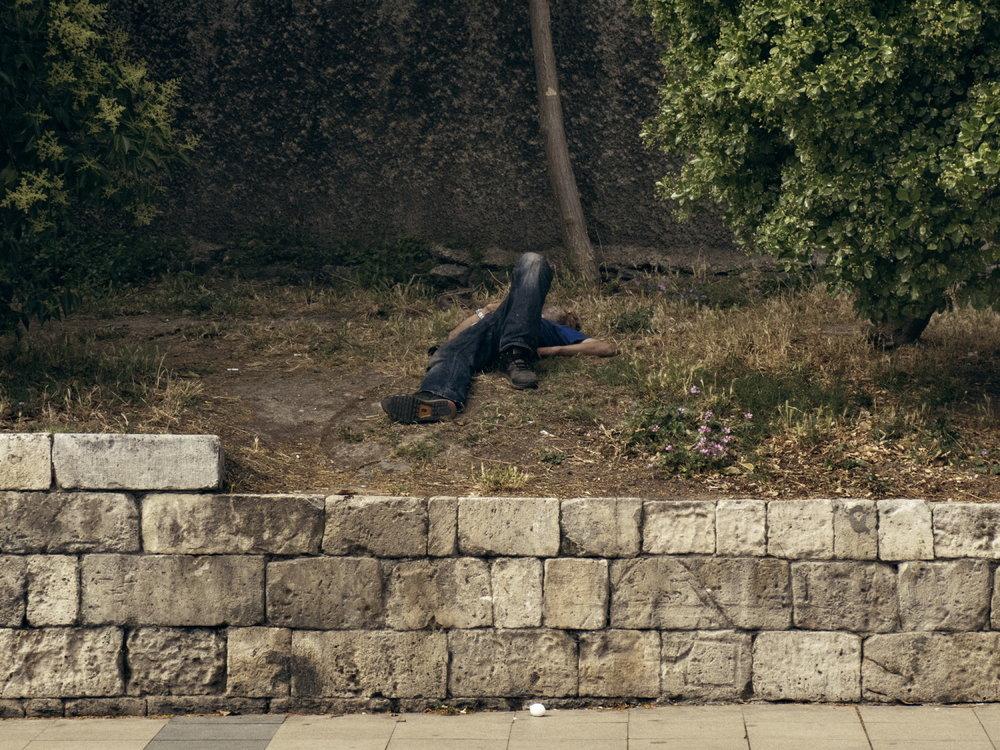 © Alessandro Cosmelli