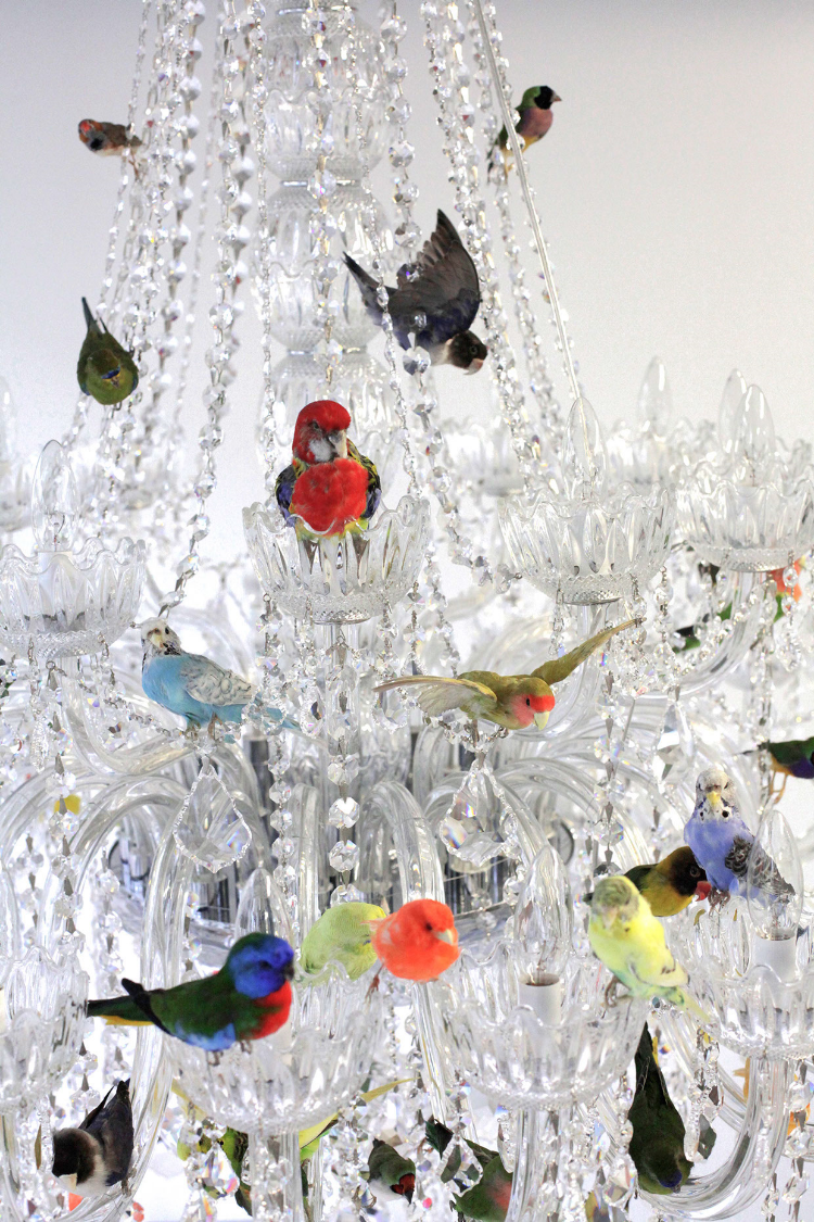 Fs bird chandelier arubaitofo Gallery