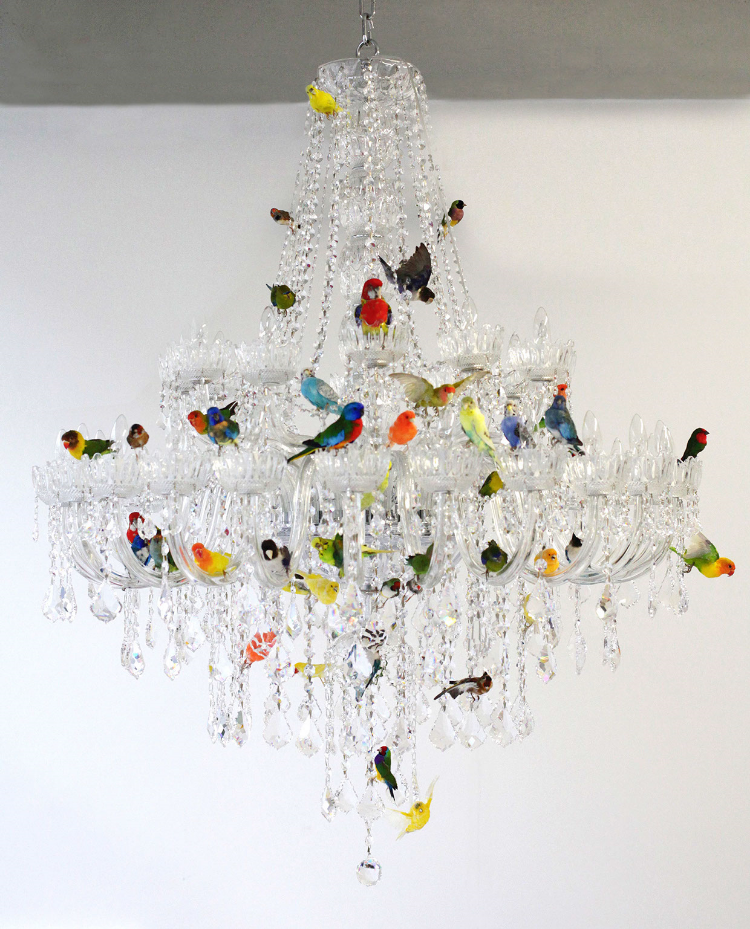 2013  Crystal chandelier and taxidermy birds  h.62 in (157,5 cm) diam. 50 in (127 cm)  Sebastian ErraZuriz's new Bird Chandelier presents a traditional crystal lamp covered with taxidermy birds. The 50 birds attempt to balance the presence of the shiny crystals with their multicolored feathers. Almost as fragile and delicate as the glass pieces themselves the birds are immortalized as decoration offering a cold and eerie beauty. The Bird Chandelier was inspired by a similar lamp at Sebastian's grandmother's house which would occasionally have birds fly in through the windows, perch on the lamp and at times unfortunately be injured or die when trying to fly out through a different closed window.