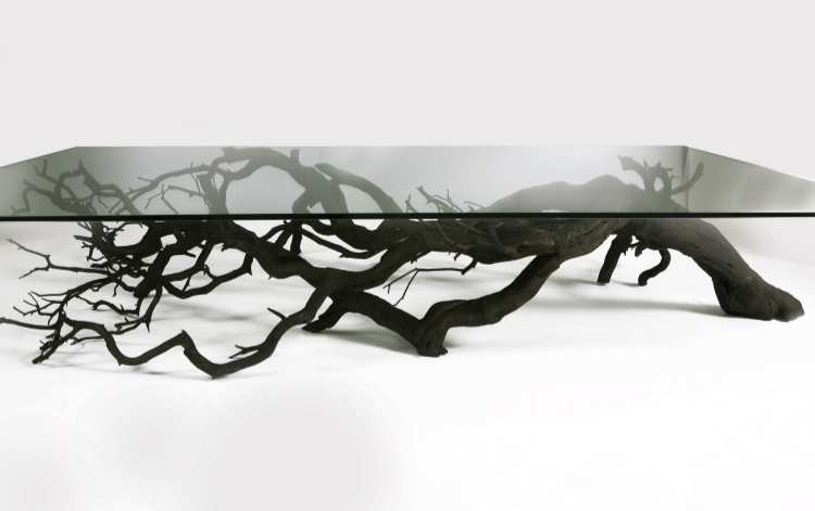 Etonnant Rescuing Fallen, Dead Native Trees From Forests In South America, Sebastian  ErraZuriz Twists And Readapts Their Branches So They Can Find A New Life As  ...
