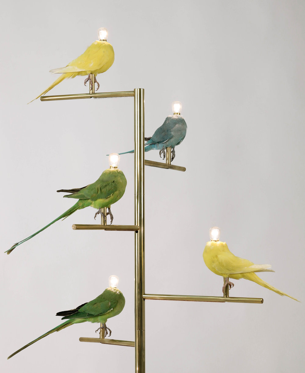 Sebastian Errazurizu0027s New Floor Lamp Continues His Ongoing Series Of  Taxidermy Bird Lamps.The Fragile And Colorful Birds Are Frozen On Their  Perch And Seem ...