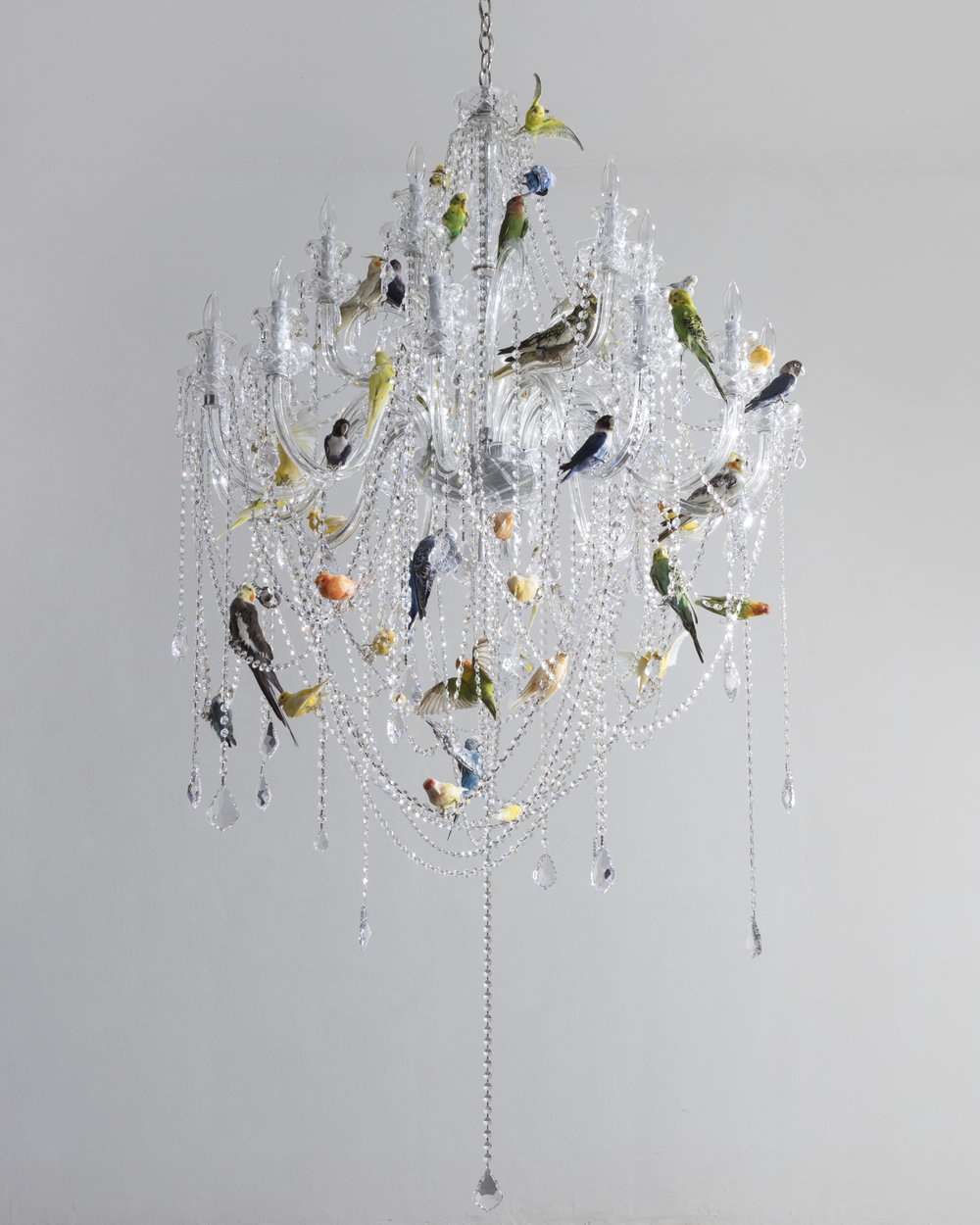 2018  Crystal chandelier and taxidermy birds  h.70 in (177.8 cm)  diam. 40  in (101.6 cm)  Sebastian ErraZuriz's new Bird Chandelier presents a traditional crystal lamp covered with taxidermy birds. The 50 birds attempt to balance the presence of the shiny crystals with their multicolored feathers. Almost as fragile and delicate as the glass pieces themselves the birds are immortalized as decoration offering a cold and eerie beauty. The Bird Chandelier was inspired by a similar lamp at Sebastian's grandmother's house which would occasionally have birds fly in through the windows, perch on the lamp and at times unfortunately be injured or die when trying to fly out through a different closed window.