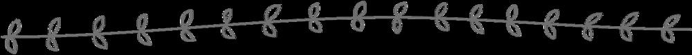 orange-arrow-divider.png