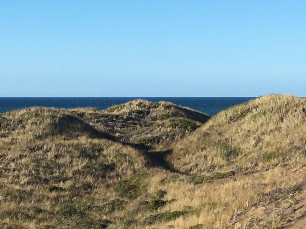 Daily dune hike.