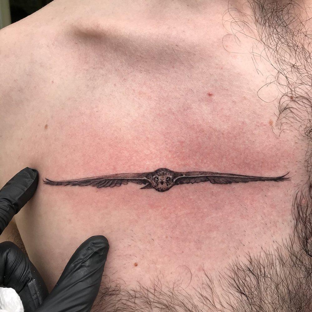 fine line single needle Justin Turkus Philadelphia best tattoo artist hawk eagle front tiny chest.jpg