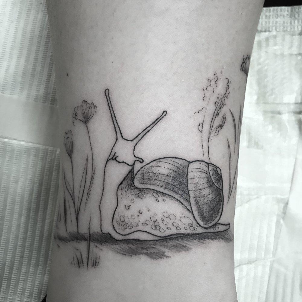 fine line single needle Justin Turkus Philadelphia best tattoo artist snail.jpg