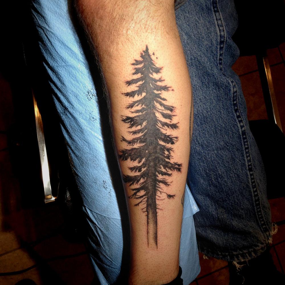 bg Justin Turkus Philadelphia fine line lettering best tattoo Artist douglas fir leg fullsize.jpg