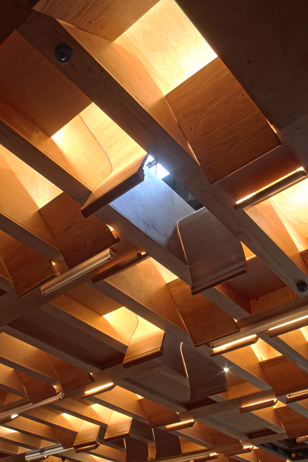 Community room ceiling features light diffusers made out of reused church pews