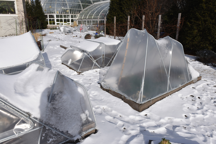 These cold frames in the Rooftop Edible Garden at Phipps Conservatory and Botanical Gardens were designed, constructed and installed by architecture students from Carnegie Mellon University. It's part of a joint project between the school and conservatory.