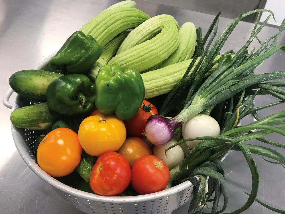 2018_Learning_Garden_Vegetables_rgb.jpg