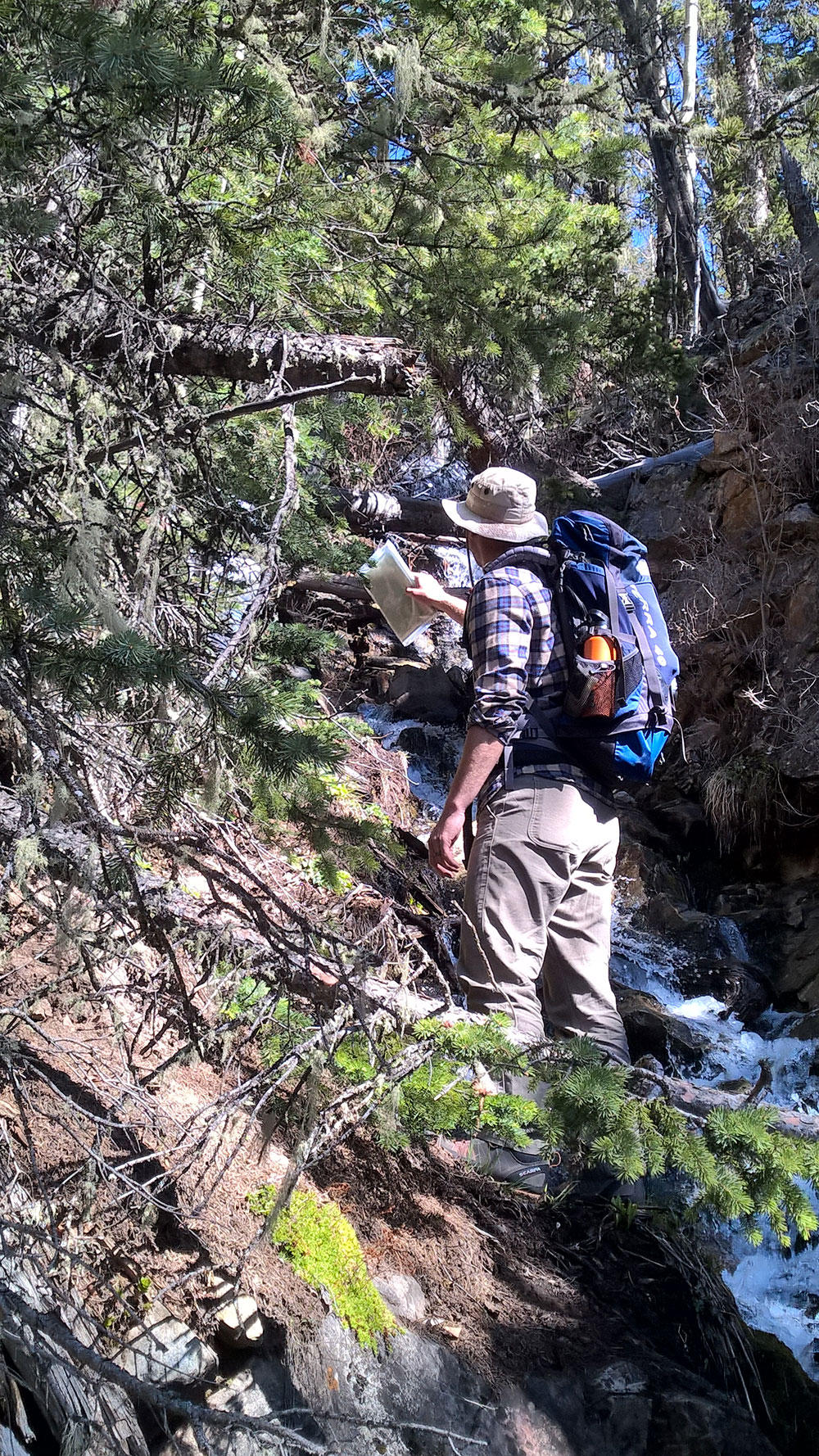 This photo pretty much sums up our hike on Little Castillo. It was steep, thick, uneasy terrain, surrounded with downed limbs. We hiked along a beautiful snowmelt creek that was our constant source of water. Billy is pictured here scouting out a passable approach.