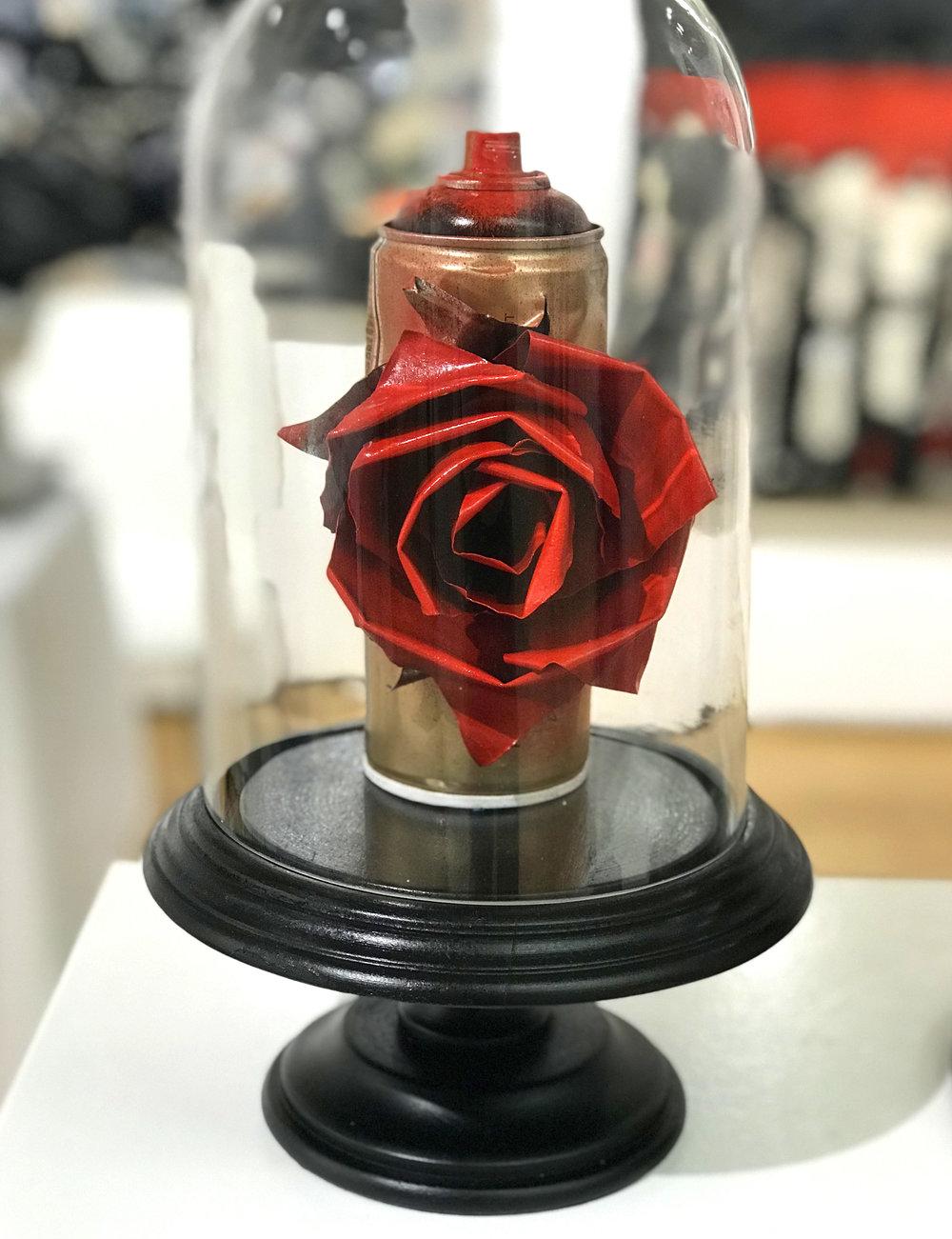 rose-sm-red.jpg