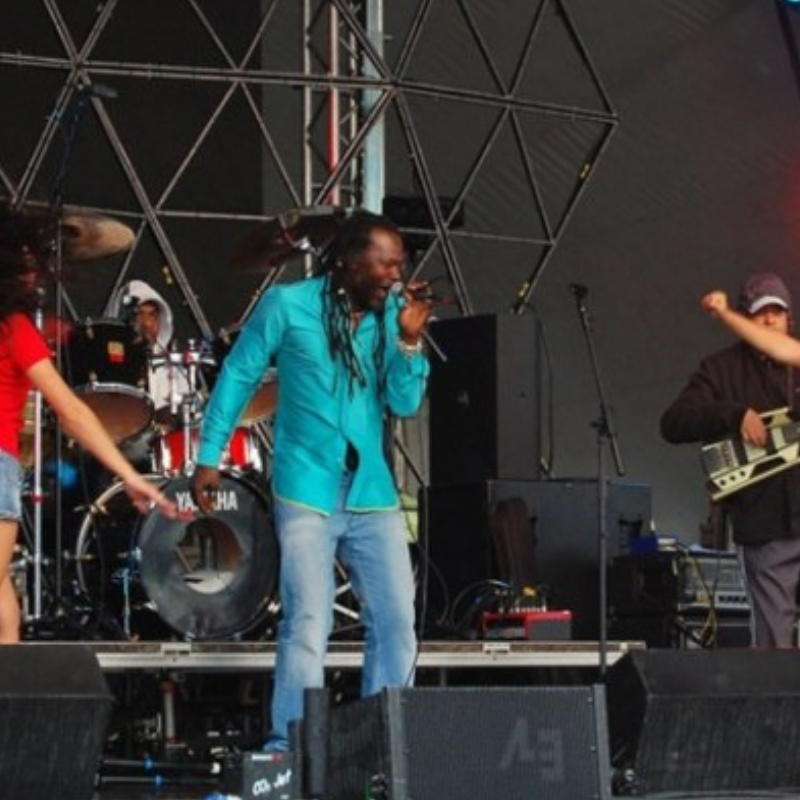 Levi Roots_Singing on Stage - Just Entrepreneurs.png