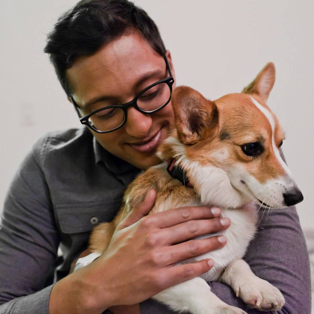 This is not my dog but I am an unabashed lover of corgis.