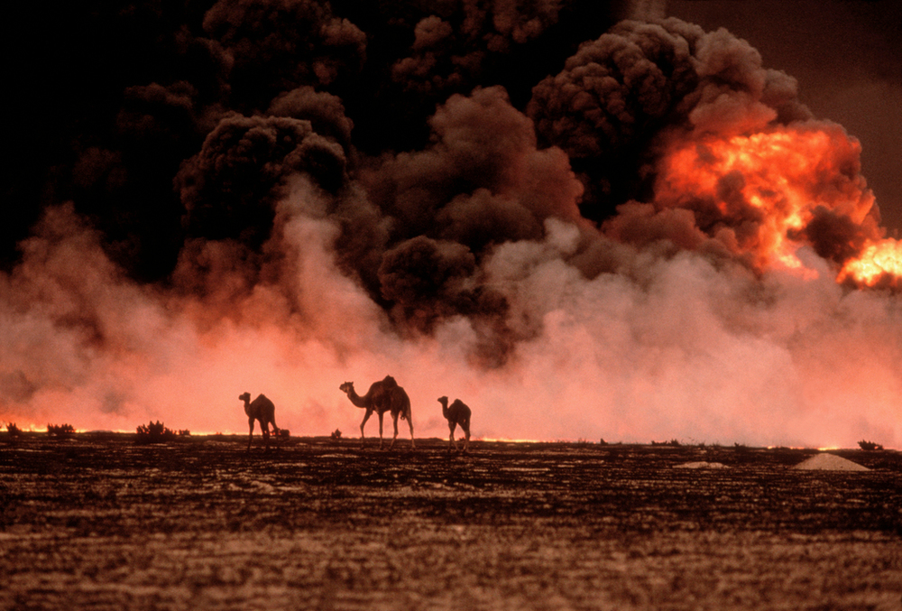 Kuwait, 1991. Photograph by Steve McCurry.
