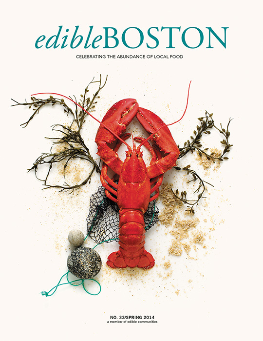Spring 2014 Edible Boston Cover
