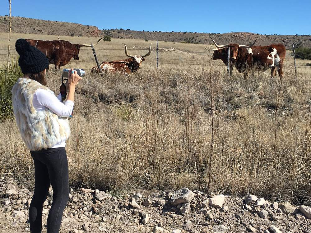 Rachel photographing Long Horns in Texas.
