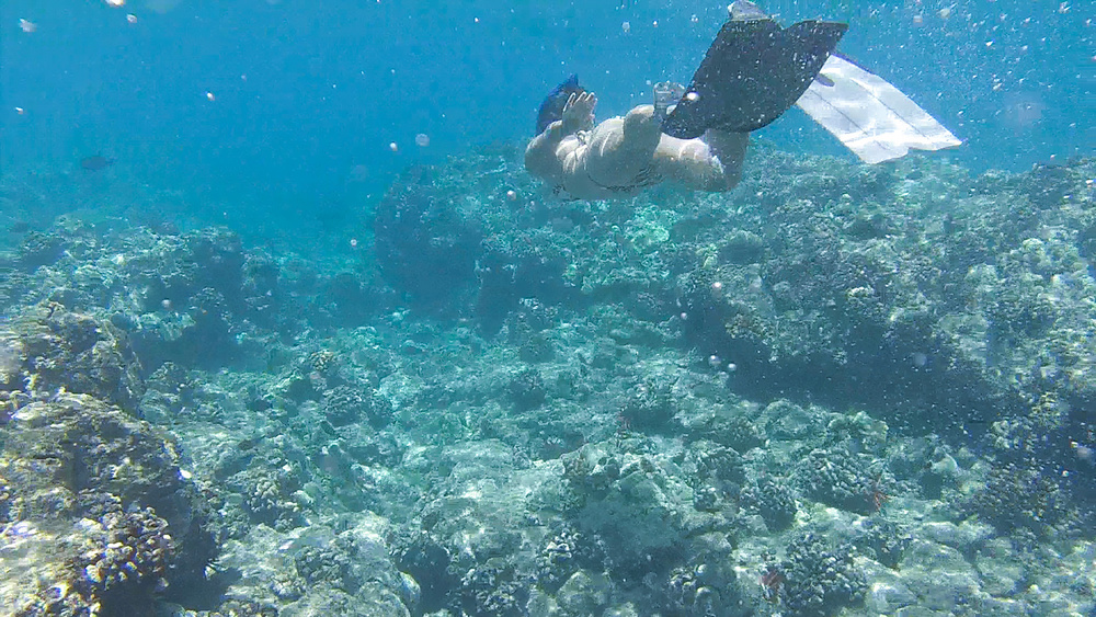Snorkeling outside the Wailea Mariott Beach Resort
