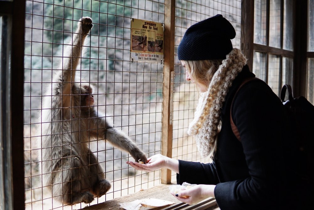 chrissihernandez-japan-kyoto-monkeypark-02