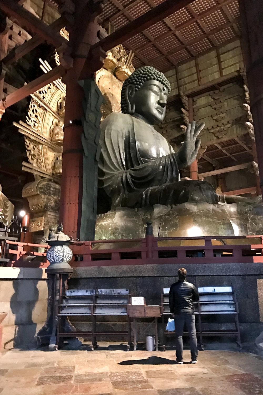 chrissihernandez_japan_narapark_buddha