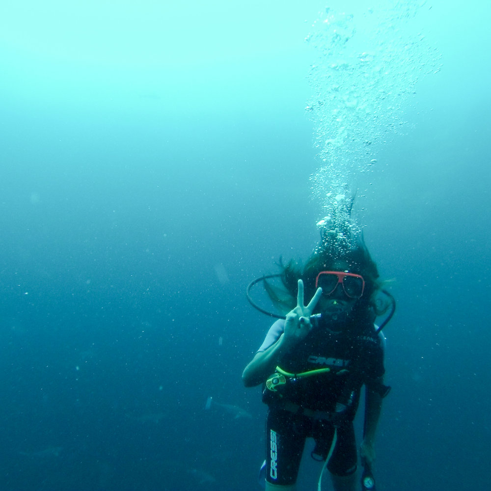 chrissihernandez-bahamas-shark-dive-02.jpg