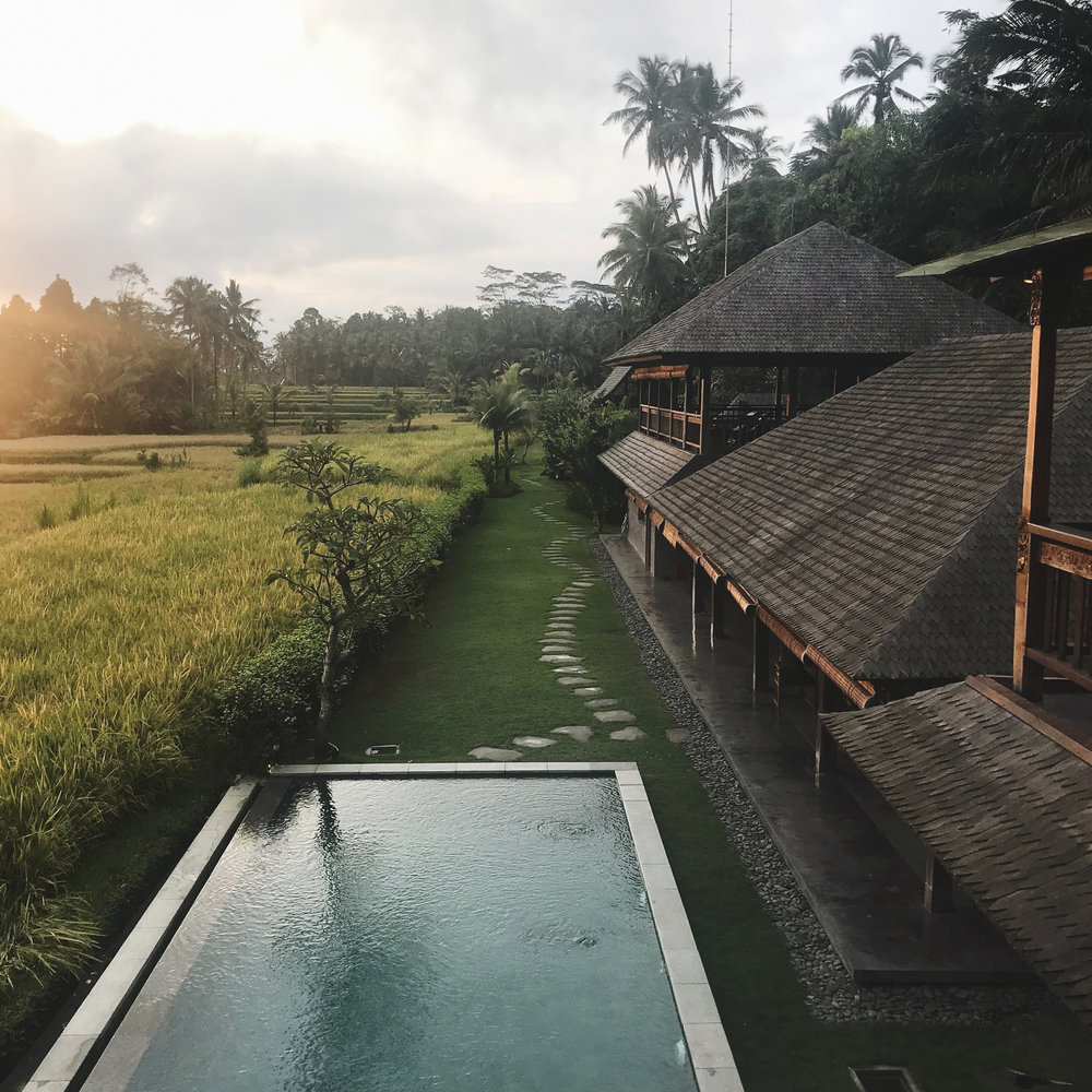 chrissihernandez-bali-ubud-airbnb-iphone (23)copy.jpg