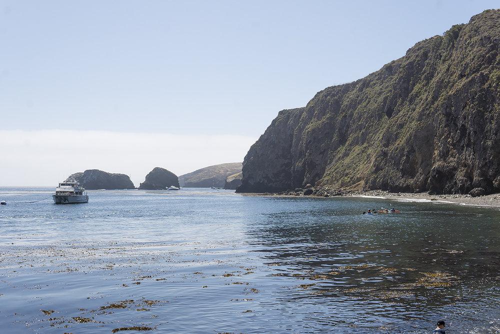chrissihernandez-california-santacruzisland (16)copy2000.jpg