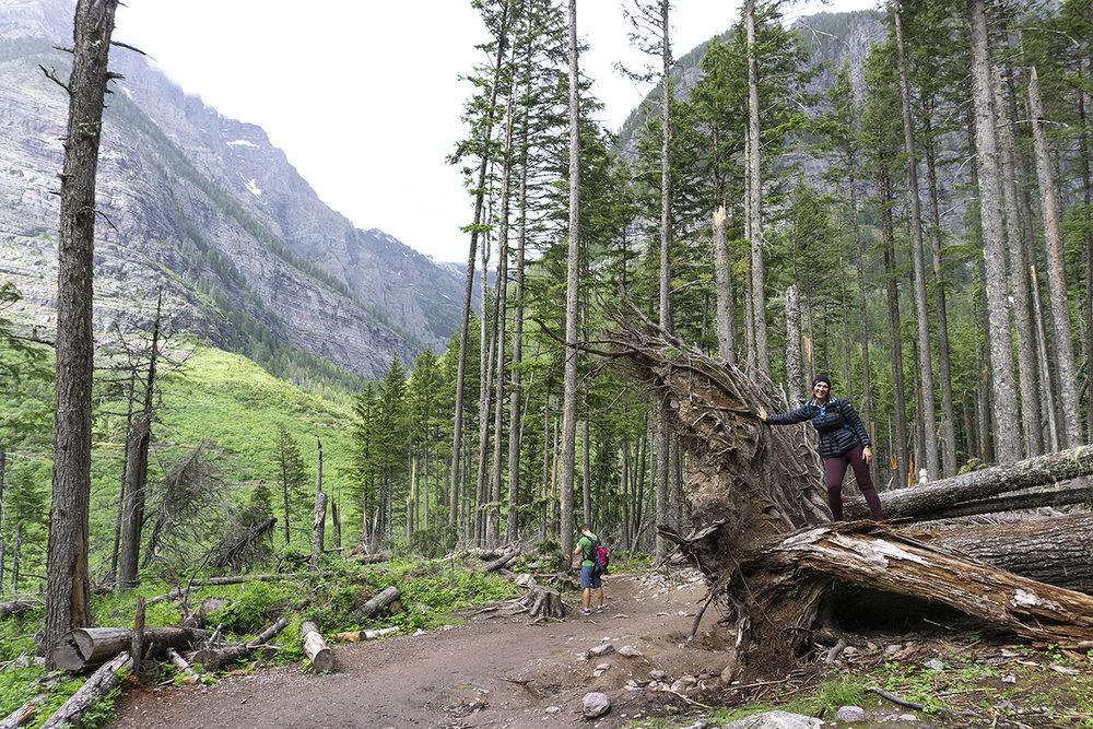 chrissihernandez-montana-glacier-national-park (65)copy2000.jpg